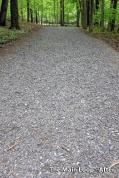 Trails-1200-10