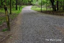 Trails-1200-4